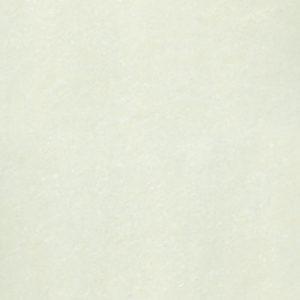 Gạch lát nền granite Taicera bóng kính P87703N