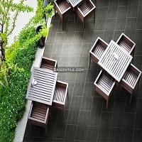 Gạch sân vườn Đồng Tâm 300x600 mm