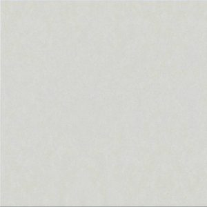 Gạch lát nền granite đồng chất Taicera G68025