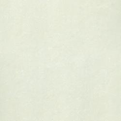 Gạch lát nền 60x60 Taicera bóng kính P67703N