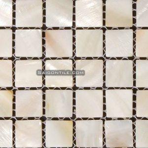 Gạch mosaic cao cấp Cp1058N