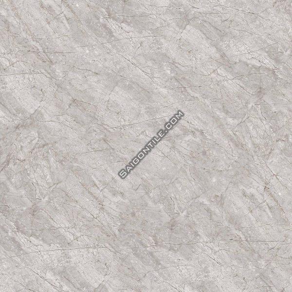 Gạch lót sàn granite Đồng Tâm 80x80 DTD8080TRUONGSON005-FP
