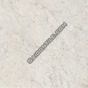 Bảng giá gạch Đồng Tâm 400x800 glazed 4080FANSIPAN008-H+ dán sàn chung cư