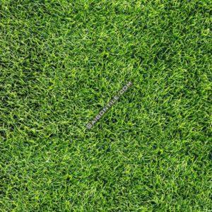 Gạch cỏ lát sân vườn cao cấp Đồng Tâm 40x40 4040GREENERY002