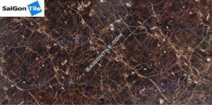 Gạch tiền sảnh bóng kính cao cấp nhập khẩu 60x120 DBH612109