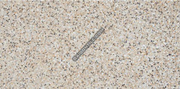 Gạch chống xước lót sân siêu bền Đồng Tâm 30x60 3060TAYBAC008