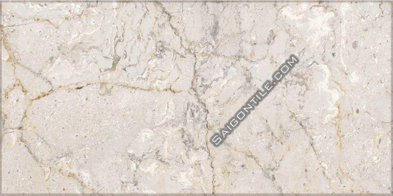 Gạch vân đá ốp 10x20 1020 ROCK009