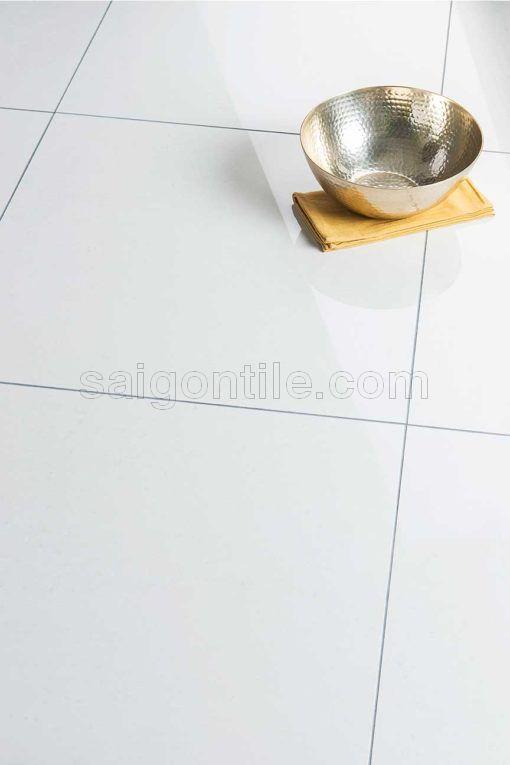 Gạch hiện đại 60x60 DMY6000