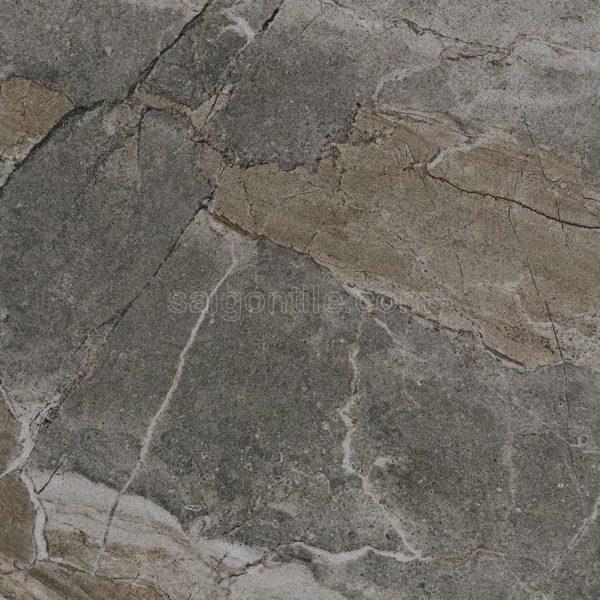 Gạch màu xám đậm vân đá 60x60 bóng kính nhập khẩu DBY66812
