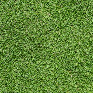 Gạch lát nền sân vườn 300x600 Đồng Tâm greenery 3060GREENERY001
