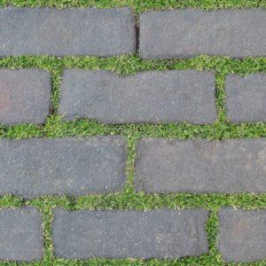 Gạch lát nền sân vườn 300x600 Đồng Tâm greenery 3060GREENERY007